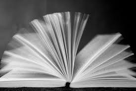 Ce blog vous propose des idées de lectures, ainsi que des avis sur les livres présentés.  Nous sommes deux amies de Troisième. Nous adorons lire et voulons partager ça avec vous.   livress